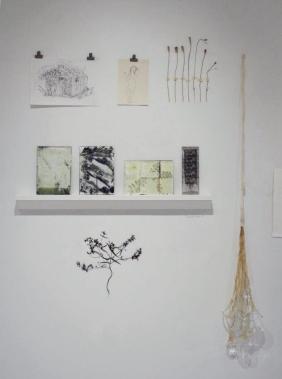 """""""Danmark"""" fra udstillingen Växternas Hemliga Liv"""